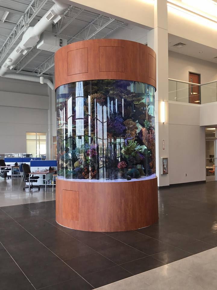 3000 Gallon Cylinder Aquarium Titan Aquatic Exhibits