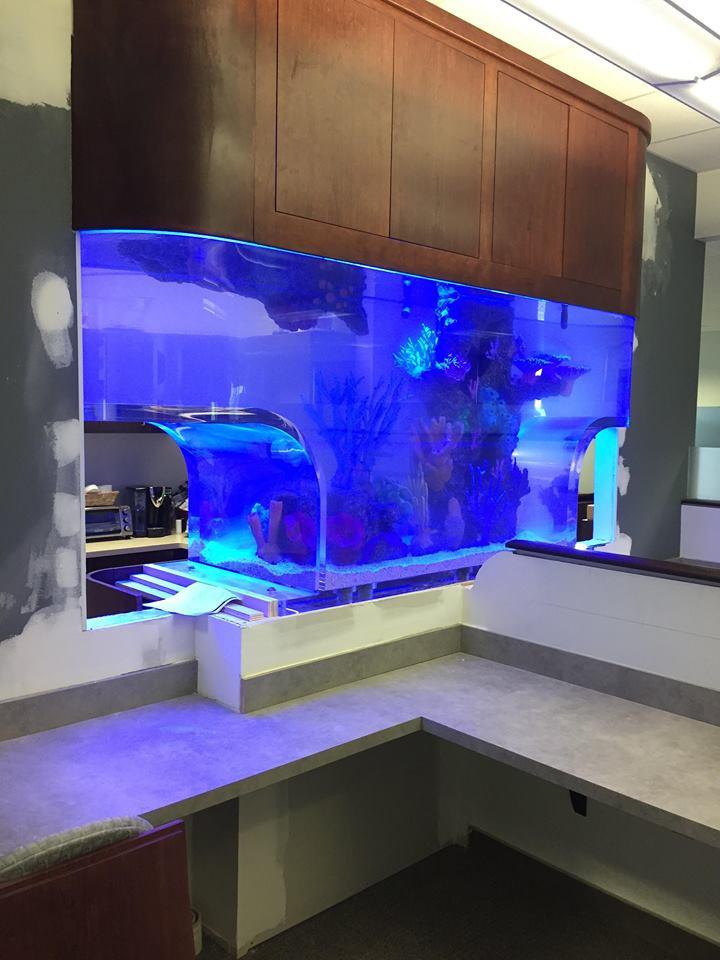 Expert Acrylic Aquarium Manufacturers Design