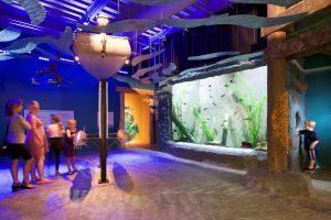 Custom Fiberglass Aquarium Built For The Michigan Science Center
