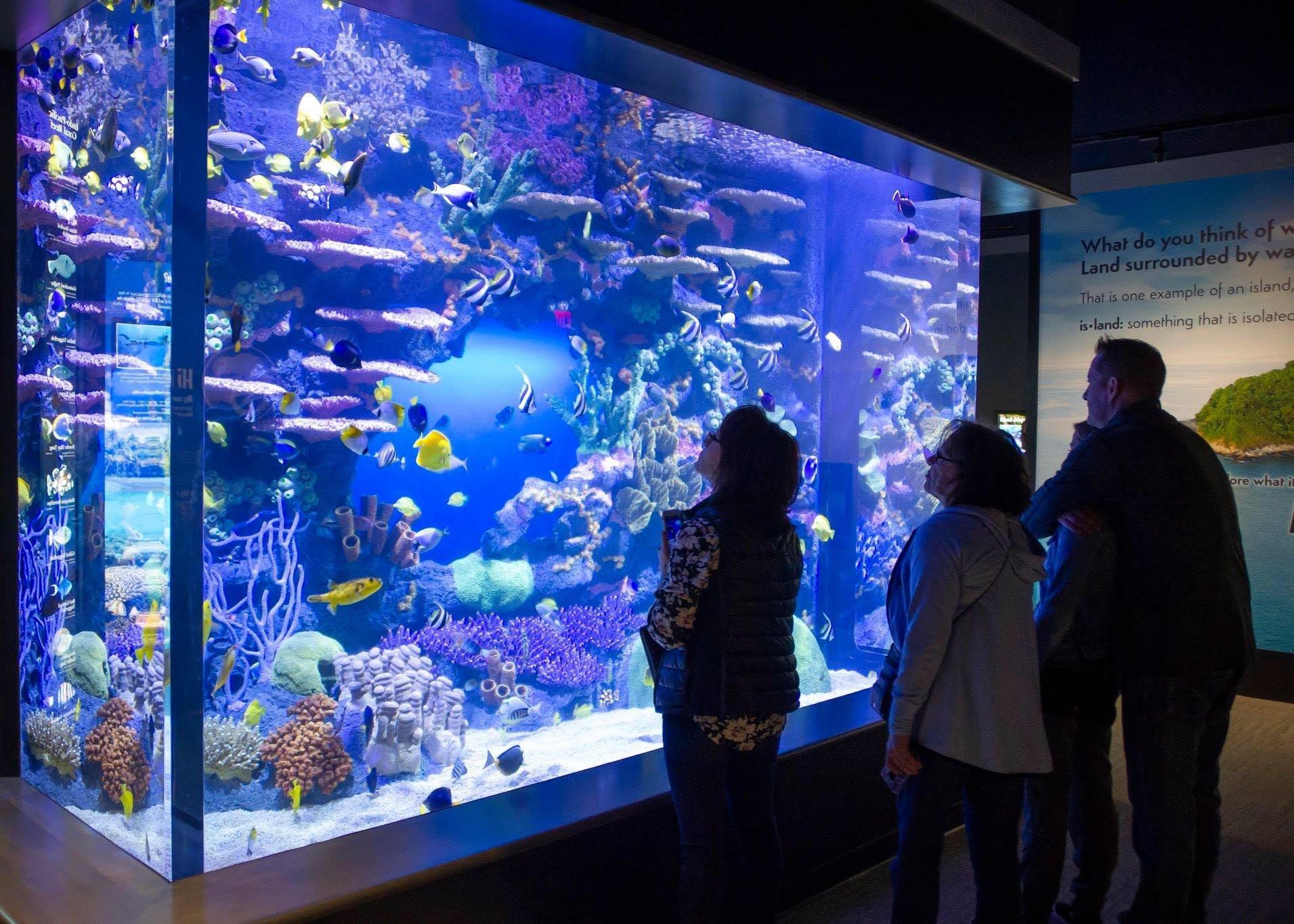 Custom Fiberglass Aquarium built for the Tennessee Aquarium