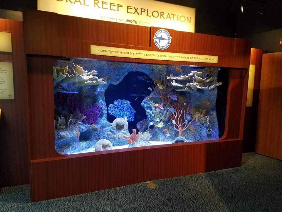 Custom Fiberglass Aquarium built for The Florida Keys History & Discovery Center